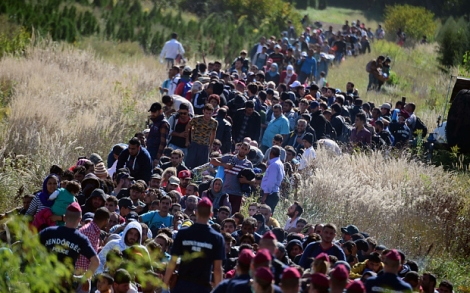 TOPSHOTS Migrants walk through the countryside after crossing the Hungarian-Croatian border near the Hungarian village of Zakany to continue their trip to the north on September 21, 2015. Croatia and Hungary have traded barbs on a national level, each pointing the finger at the other over their responses to Europe's escalating migrant crisis.     AFP PHOTO / ATTILA KISBENEDEKATTILA KISBENEDEK/AFP/Getty Images
